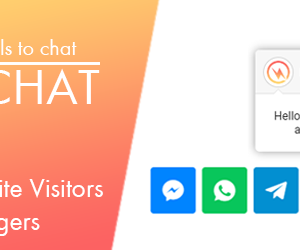 QuixChat Pro - Wp Chat Button Premium Feature
